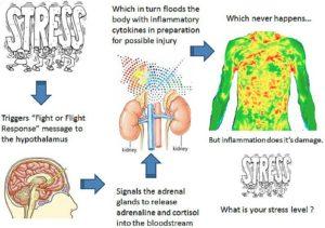 stress-1-revised-